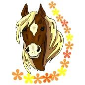 Window Color Pferdekopf